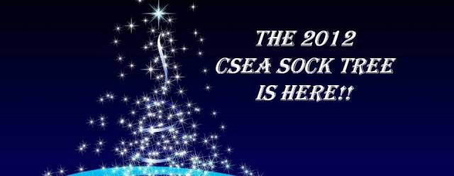 csea_293_sok_img